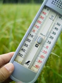 今朝の気温13.5℃で・・・寒い     朽木小川・気象台より - 朽木小川・気象台より、高島市・針畑郷・くつきの季節便りを!