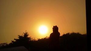 9月4日(月) 朝の気温 8度。 - つるぎさん山小屋日記
