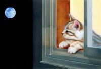 9月のデスクトップピクチャ(壁紙) - junya.blog(猫×犬)リアリズム絵画