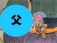 三角関係パート2 - わんわん・パラダイス