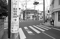 道草(その5) - そぞろ歩きの記憶