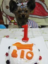 1才のお誕生日♪ - りりぃ達といっしょ+りお