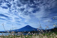29年8月の富士(18)大石公園の富士 - 富士への散歩道 ~撮影記~