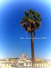 """""""新しいカメラ♪ どれを買おうか?!検討中~"""" - 「ROMA」旅写ライターKasumi@在ローマがつづる、最新!ローマあれこれ♪"""