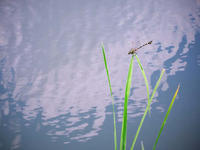 雲行き - 1/365 - WEBにしきんBlog