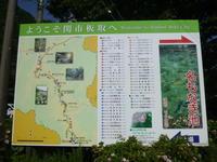 今日のお気に入り写真 モネの池見学・高賀山 (1,224.2M) に登る - 風の便り