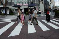 横断歩道 - Wayside Photos  ☆道端ふぉと☆