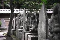 百観音霊場--北鎌倉 円覚寺にて - くにちゃん3@撮影散歩