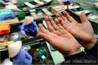 インドシナ周遊の旅(52)ニンビン(6)チャンアン(3)逞しい手 - My Filter     a les  co les   Photographies