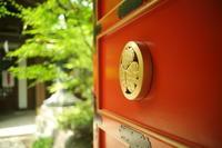 新橋愛宕神社 - 写真日記