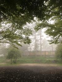 週末の天気と気温(9月2週目) - 北軽井沢スウィートグラス