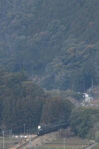 ぽっ - 2017年・大井川 - - ねこの撮った汽車