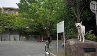 Vol.1232 駒岡内町第二公園 - 小太郎の白っぽい世界