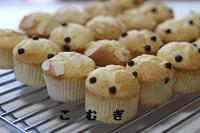 ミニマフィン&グレープフルーツゼリー - パン・お菓子教室 「こ む ぎ」