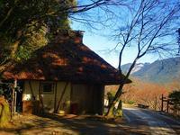熊野古道・中辺路/近露~小広へ - 東 道のきのくに花街道