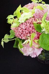 美しきケイトウ、負けずに美しい花オクラ - お花に囲まれて