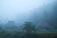 濃い霧の朝に・・・暫くするとおにゅう峠から雲海が  朽木小川・気象台より - 朽木小川・気象台より、高島市・針畑郷・くつきの季節便りを!