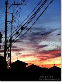 【あ】朝焼け:あさやけ - ネコニ☆マタタビ