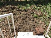 庭造り…その2 - いととはり