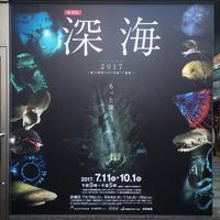 深海2017☆国立科学博物館 - グラフィックデザインとイラストレーション☆YukaSuzukiのブログ