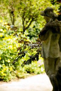 英国庭園(1) - Tullyz bis /R-D1ときどきM