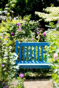 英国庭園(4) - Tullyz bis /R-D1ときどきM