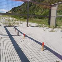 ウミガメの墓標 - Beachcomber's Logbook