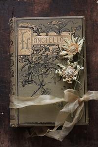 素敵な装丁の古書 - 私の部屋から.....