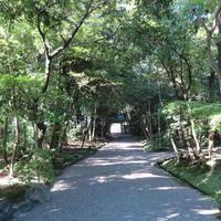秋篠から歌姫の三角へ - 新世界遺産への道~他とは違うちょっとした苦味~