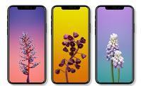 iPhone8/iPhoneXのメモリ容量、カメラ部分、A11プロセッサついてのまとめ! - iPhone8やXperia XZ 対応 スマホケース 直販サイト!