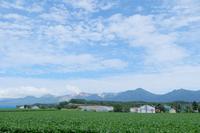 十勝岳が見える@北海道 - カメラをもってふらふらと