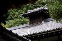 気になる北鎌倉--円覚寺 - くにちゃん3@撮影散歩