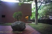 避暑の東京都美術館・・・4 - 桐一葉2