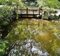博多旅行(21)博多のビル街に佇む日本庭園「楽水園」 - たんぶーらんの戯言