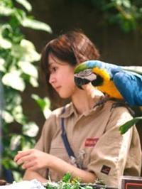 よりそう鳥 - Blue Planet Cafe  青い地球を散歩する