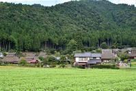 かやぶきの里 2017秋 - まったり京都時間(Kyoto dreamtime)