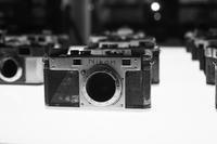 Nikon 100th Anniversary - 心のカメラ / more tomorrow than today ...