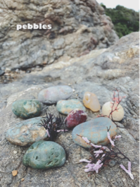 pebbles - on the shore