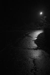 秋田の夜(4cut) -     ~風に乗って~    Present