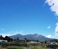 八ヶ岳の青い空とねこじゃらし - ピースケさんのお留守ばん