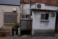 低い窓 - 音舞来歩(IN MY LIFE)