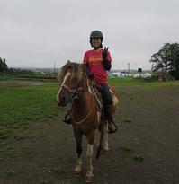 暴れる馬 - ヨモギ日記