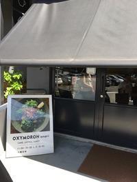 鎌倉でランチ:オクシモロンonari - おいしいもの大好き!