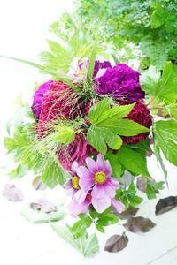 コスモスとケイトウで大人のブーケ - お花に囲まれて