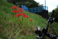 4ヶ月ぶりの自転車通勤 - 空のむこうに ~自転車徒然 ほんのりと~