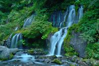 吐竜の滝 - 人生とは旅なり