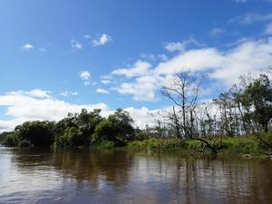 雨が降ってそして晴れた・・。 - 大湿原の小さな町から                 北の大地で思ふことblog