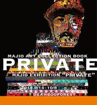 "2017.9/14~10.9  MAJIO個展『PRIVATE』 〜ミニ作品集""PRIVATE""完成記念展〜 / bambooforest - bambooforest blog"