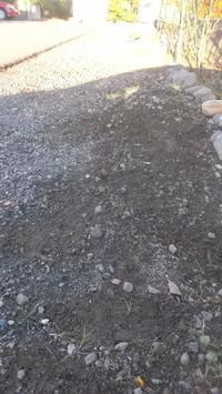 第2花壇前--草取り - よっし~発・・・・・手作り基地