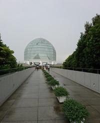 東京 水族館巡り - 北軽1130